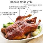 Полезные свойства утки